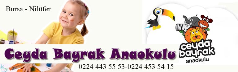 Ceyda Bayrak Anaokulu